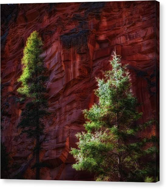 West Fork Rock Face Number Three Canvas Print