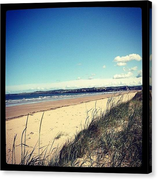 Hunting Canvas Print - West Sands St Andrews by Danielle Hunter