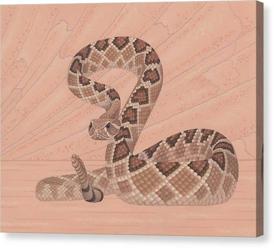 Snakes Canvas Print - Western Diamondback Rattlesnake by Nathan Marcy
