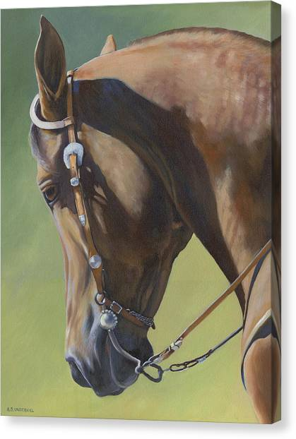 Western Elegance Canvas Print