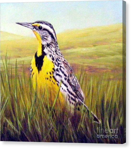 Meadowlarks Canvas Print - Western Meadowlark by Tom Chapman