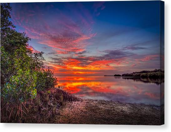 Tampa Bay Rays Canvas Print - Western Sky by Marvin Spates