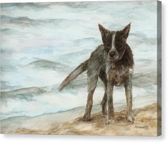Wet Dog - Cattle Dog Canvas Print