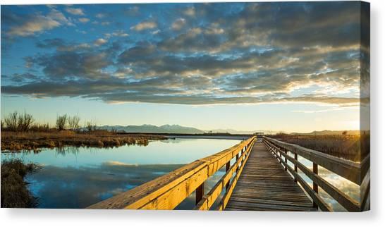 Wetland Wooden Path Canvas Print
