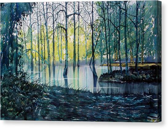 Wetlands On Skipwith Common Canvas Print