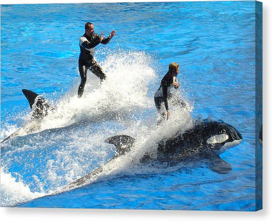 Whale Racing Canvas Print