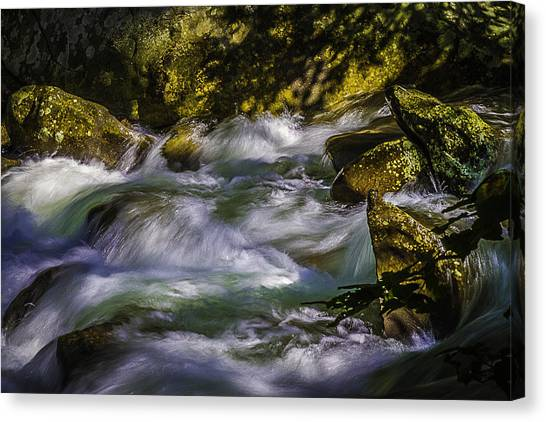 What A Rush Canvas Print by Barry Jones