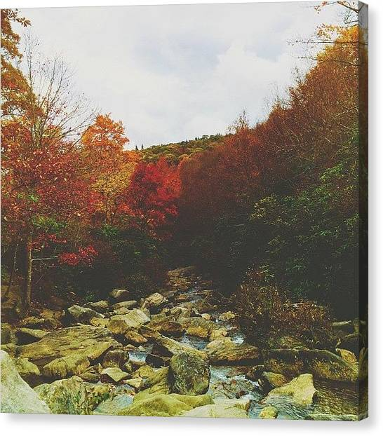 Appalachian Mountains Canvas Print - River by Simon Nauert