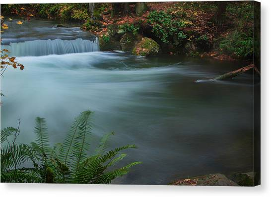 Whatcom Falls Park Canvas Print