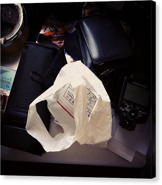 Medicine Canvas Print - What's Inside Stache's Bag by TC Li