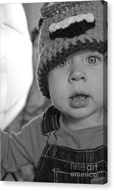 What's That Canvas Print by Baywest Imaging