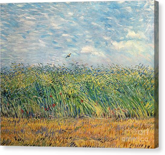 Impressionism Canvas Print - Wheatfield With Lark by Vincent van Gogh