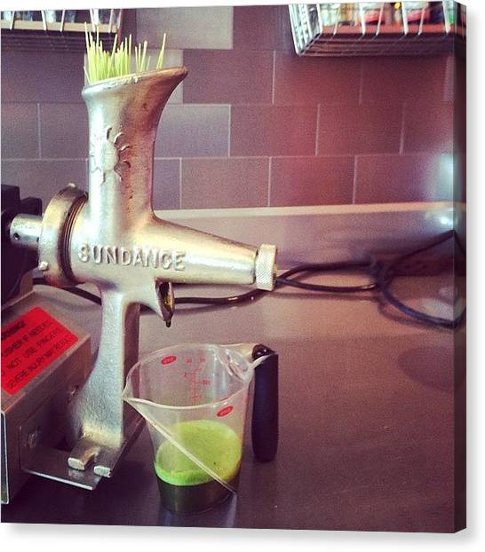 Smoothie Canvas Print - Wheatgrass Shots!!!!! by Squeezejuicery Mansour