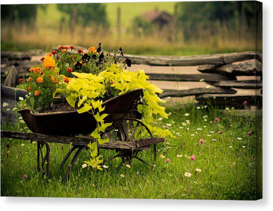Wheel Barrow Canvas Print - Wheel Barrow Of Flowers by Shane Holsclaw