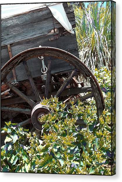 Wheels In The Garden Canvas Print
