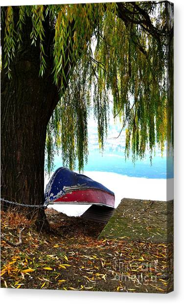 Oyama Canvas Print - Wheeping Over A Boat by Phil Dionne