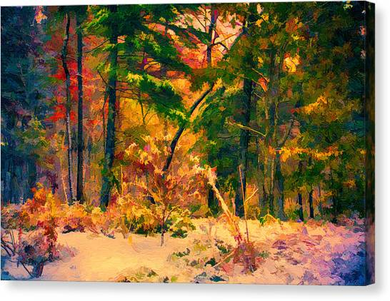 When Fall Becomes Winter Canvas Print