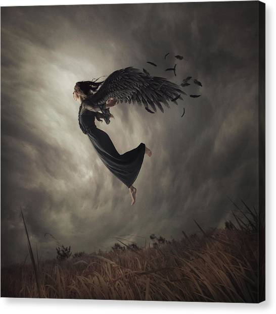 Winged Canvas Print - When The Angel Falls by Hardibudi