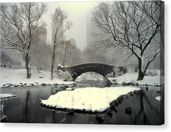 Where The  Ducks Go When It Gets All Frozen Over Canvas Print