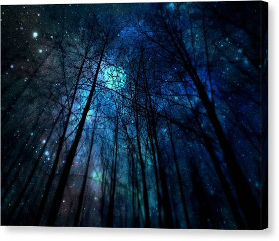 Where The Faeries Meet Canvas Print