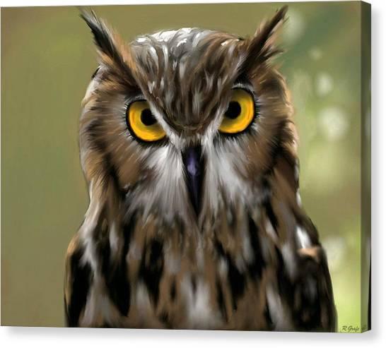 The Gaze Of An Owl - Where's My Dinner?  Canvas Print