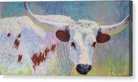 Where's Texas Canvas Print
