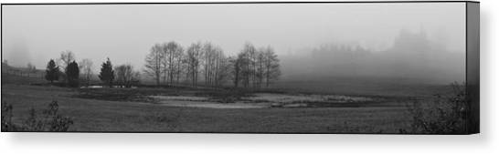 Whidbey Island Meadow In Fog Canvas Print