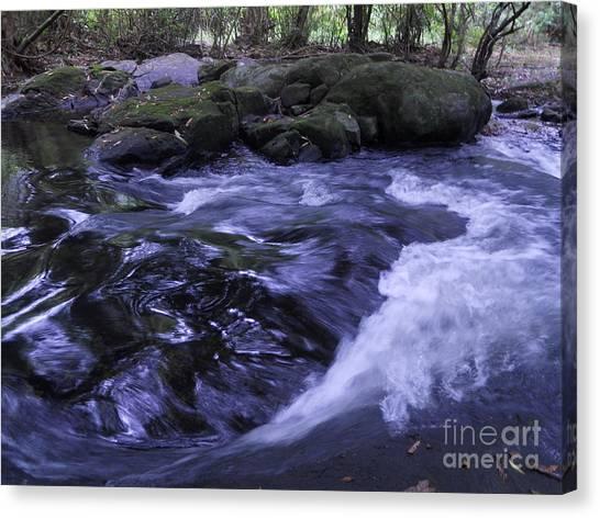 Whirls Canvas Print