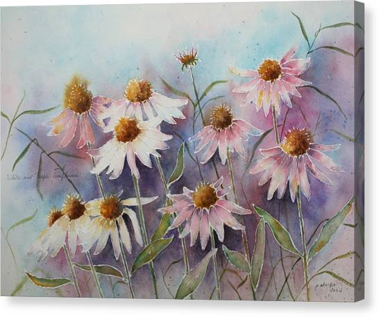 White And Pink Coneflowers Canvas Print