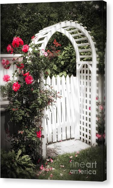 Arbor Canvas Print - White Arbor With Red Roses by Elena Elisseeva