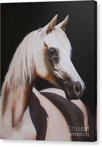 Canvas Print - White Beauty by Jill Parry