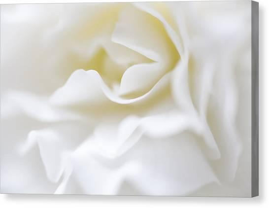White Begonia Petals Canvas Print