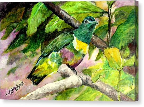 White-bibbed Fruit Dove  Canvas Print