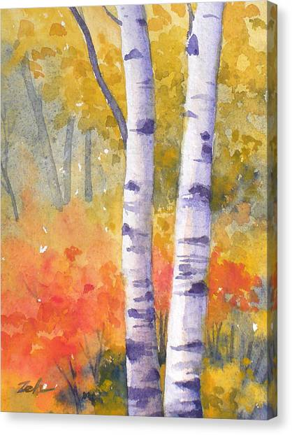 White Birches In Autumn Canvas Print