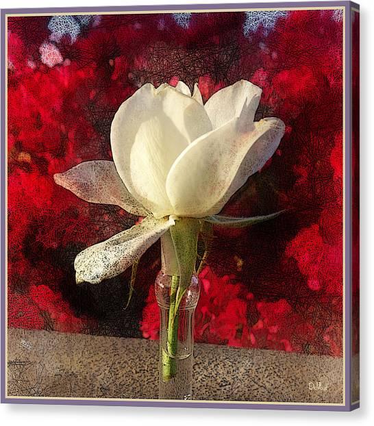 White Bud Canvas Print by Rick Lloyd