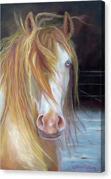 White Chocolate Stallion Canvas Print