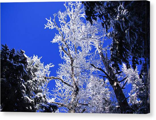 White Crystal Canvas Print