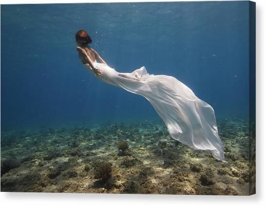Dress Canvas Print - White Dress by Assaf Gavra
