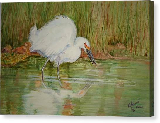 White Egret Wading  Canvas Print