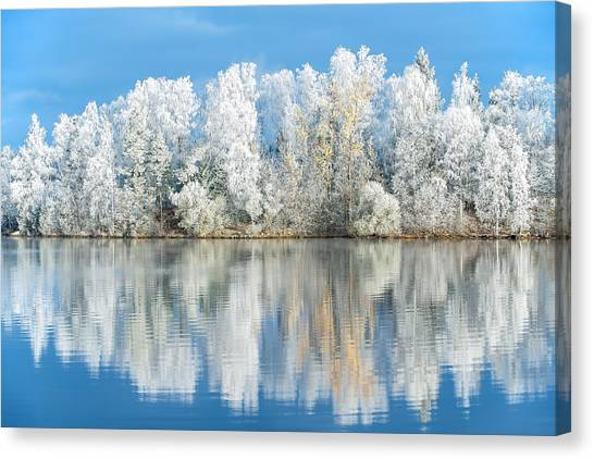White Frost Canvas Print