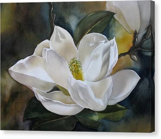 White Magnolia Canvas Print by Alfred Ng
