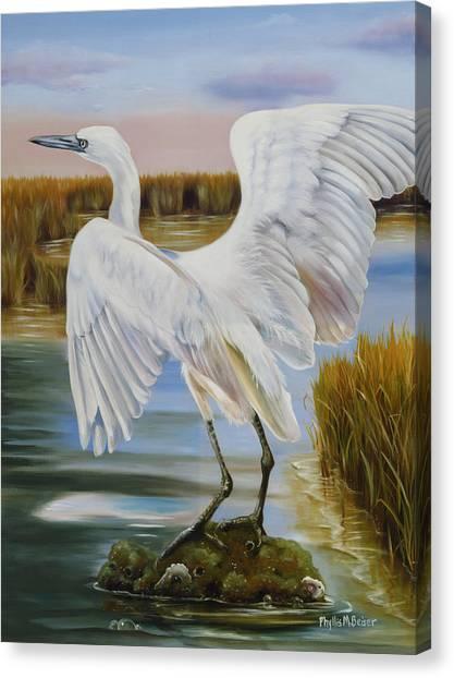 White Morph Reddish Egret At Creole Gap Canvas Print