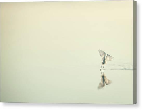Deltas Canvas Print - White Over White by Antonio Bonnin Sebasti??
