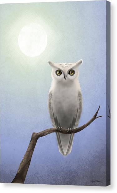 Birds Of Prey Canvas Print - White Owl by April Moen