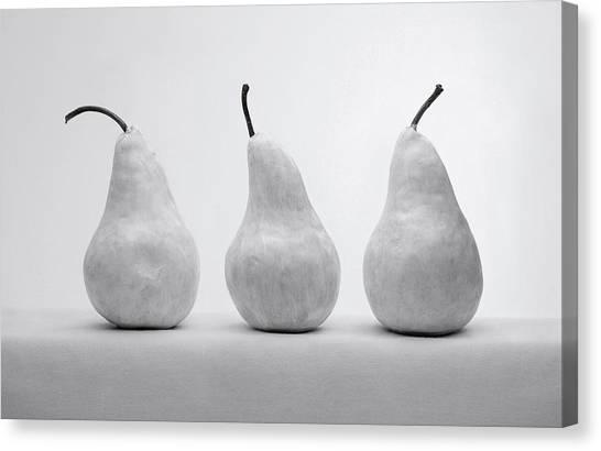 White Pears Canvas Print