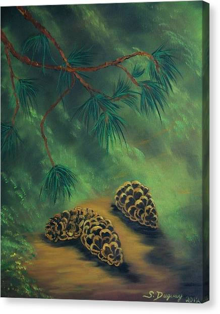 White Pine  And Cones Canvas Print