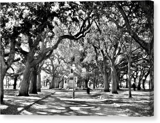 White Point Gardens At Battery Park Charleston Sc Black And White Canvas Print