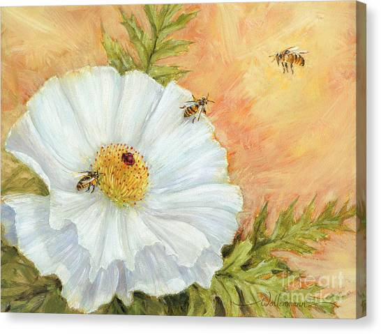 White Poppy And Bees Canvas Print