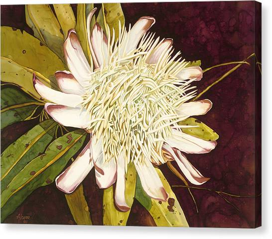 White Protea Canvas Print