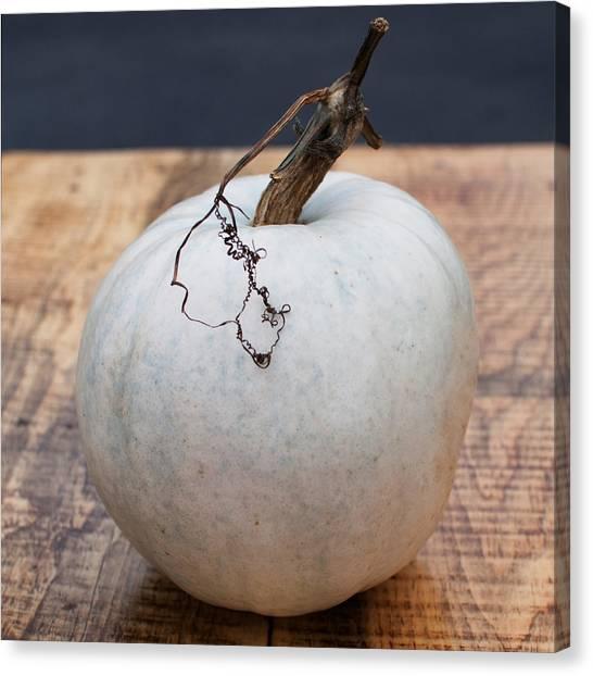 Pumpkin Canvas Print - White Pumpkin by Elizabeth Gray